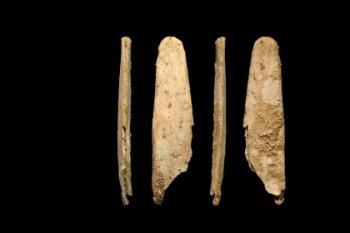У неандертальцев нашли современные инструменты