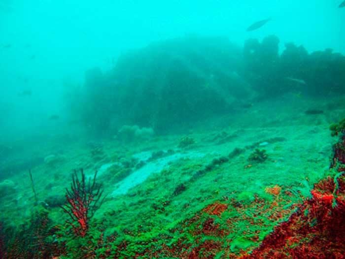 Немецкая подводная лодка U- 168 (тип IXC/40) затонула 6 октября 1944 года после попадания торпеды, выпущенной голландской субмариной HNLMS Zwaardvisch