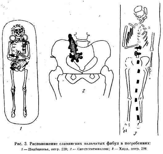 Расположение славянских пальчатых фибул