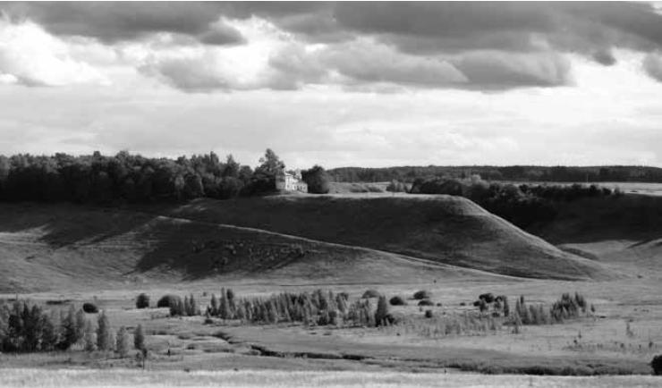 Рис. 1. Труворово городище. Вид с северо-востока. Фото Г. Н. Лебедева