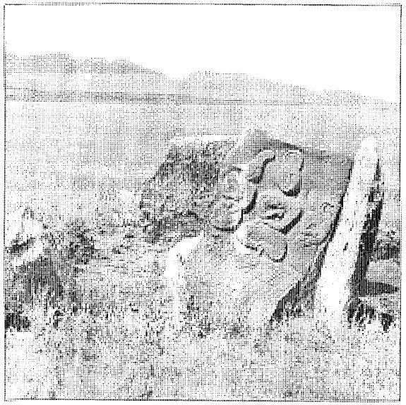 Поминальный памятник в урочище Ихе Асхет. VIII в. Монголия