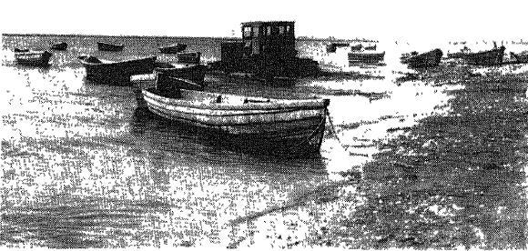Лодки для рыбной ловли. Фото Н. К. Старковой. 1964 г.
