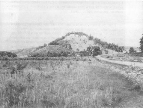 Гора Троица — остатки города Данилова. XIII в.
