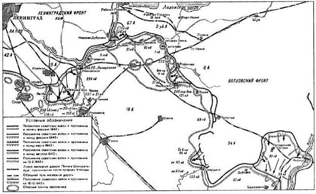 Боевые действия советских и германских войск под Ленинградом в феврале—декабре 1943 года