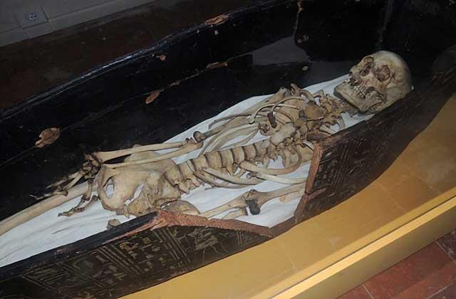 скелет мумии