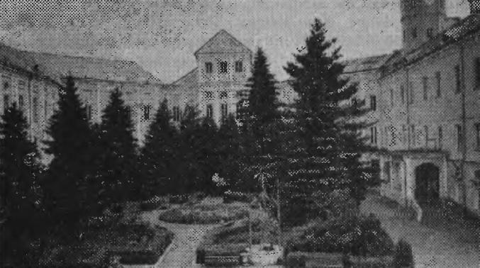 Партерный скверик во дворе замка, посаженный в 1954 году