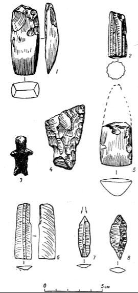 Каменные неолитические изделия с Кам¬чатки. 1 - тесло (Доярки); 2 - призматический нуклеус (Ушков- ское озеро); 3 - кремневая антропоморфная фигурка (по Шнеллю, табл. XVII, I); 4 - фигурный нож (Доярки); 5 - обломок острообушкового тесла (Култук); 6 - рету¬шированная ножевидная пластинка (Ушковское озеро); 7 - срединный резец (Ушковское озеро); 8 - наконечник стрелы (Ушковское озеро)