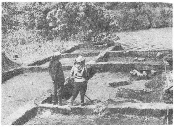Вскрытие верхнего слоя Ушковской стоянки