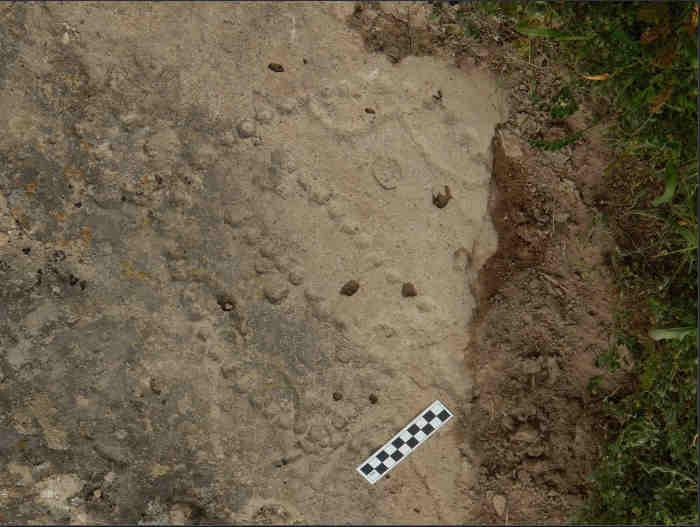 Согласно отчету Live Science, Уолтер Крист из Американского музея естественной истории определил коллекцию ям, высеченных в каменном убежище в Азербайджане, как игровую доску 4000-летней давности. Известные как «58 лунок», или «Гончие и шакалы», копии игры были также найдены в могиле древнего египетского фараона Аменемхата IV и в других местах, датируемых примерно вторым тысячелетием до нашей эры в Месопотамии и Анатолии.