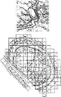 План застройки одного из больших трипольских поседений по данным аэрофото- и магнитной съемок