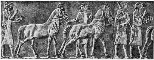 ассирийские конники