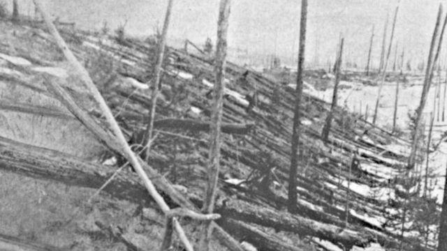 завалы леса на Тунгуске